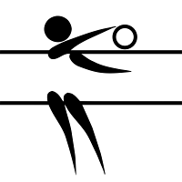 Icon Abteilung Volleyball